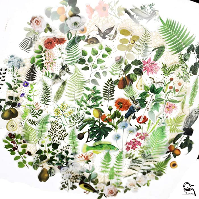 The Best Washi Stickers Nature