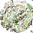 65PCS Small Scrapbook Stickers, Doraking DIY Decoration Transparent Sulfuric Paper Green Plants Stickers for Scrapbook, Decoration Without Repeat (Botanical Illustration, 65PCS/Pack)