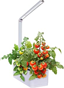 Hydroponic Indoor Herb Garden Kit - Multispectrum LED Desktop Growing Lamp Mindful Design