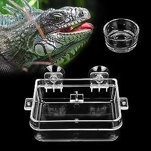 IAFVKAI Reptile Feeder Acrylic Anti Escape Gecko Chameleon Food Water Feeding Bowl Amphibians Worm Feeding Box for Snake Python Spider Lizard Scorpion Insects