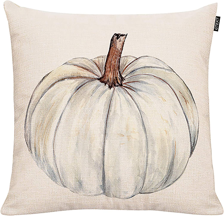 GTEXT Fall Pumpkin Throw Pillow Cover Autumn Decor White Pumpkin Pillow Cuhion Cover Case for Couch Sofa Home Decoration Fall Pillows Linen 18 X 18 Inches