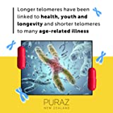 Puraz Telomere Supplements with Potent Astragalus