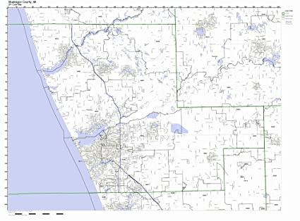 Amazon.com: Muskegon County, Michigan MI ZIP Code Map Not Laminated on