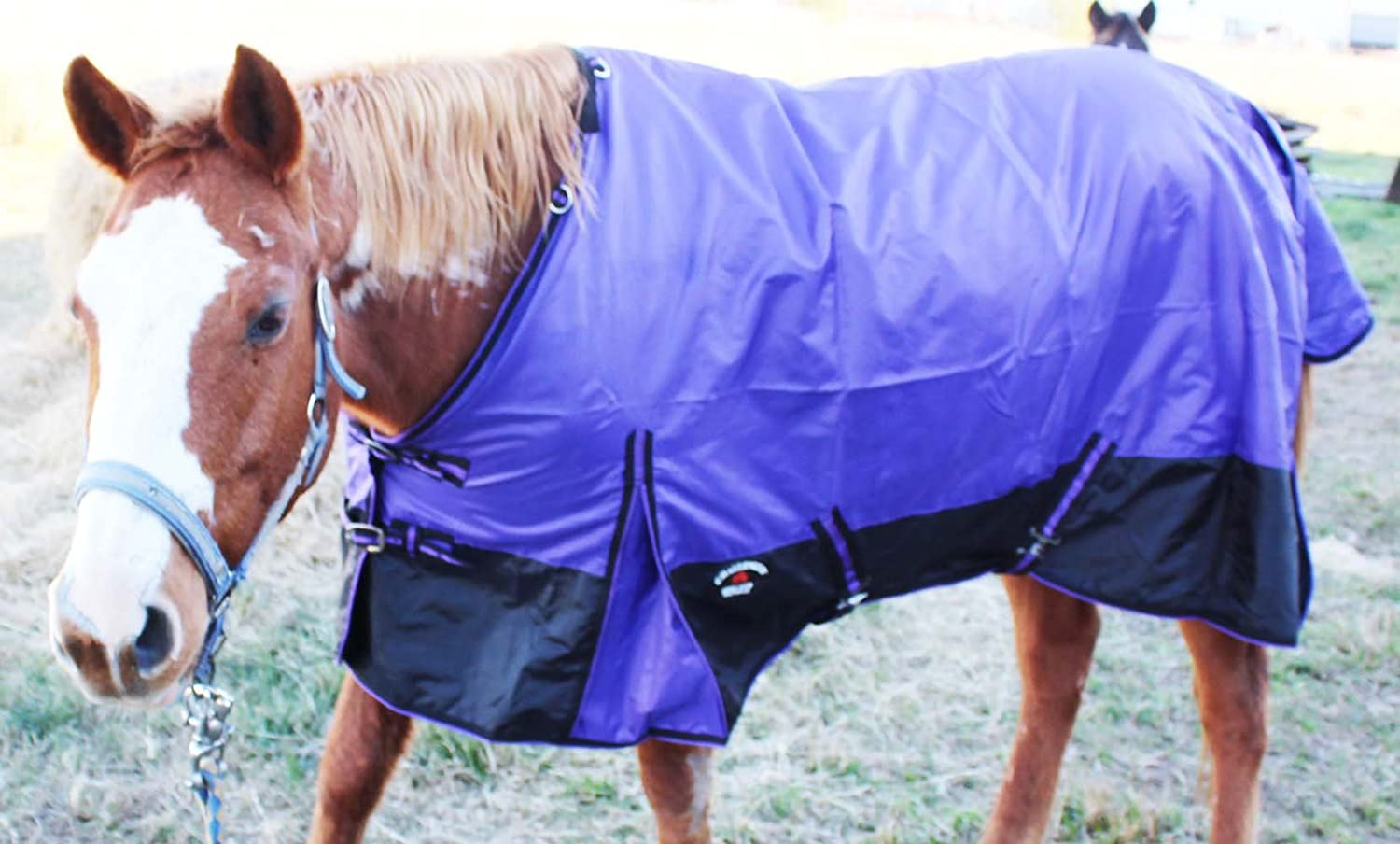 80 inches 420D Horse Light Winter Ripstop Sheet Water Resistant 7108