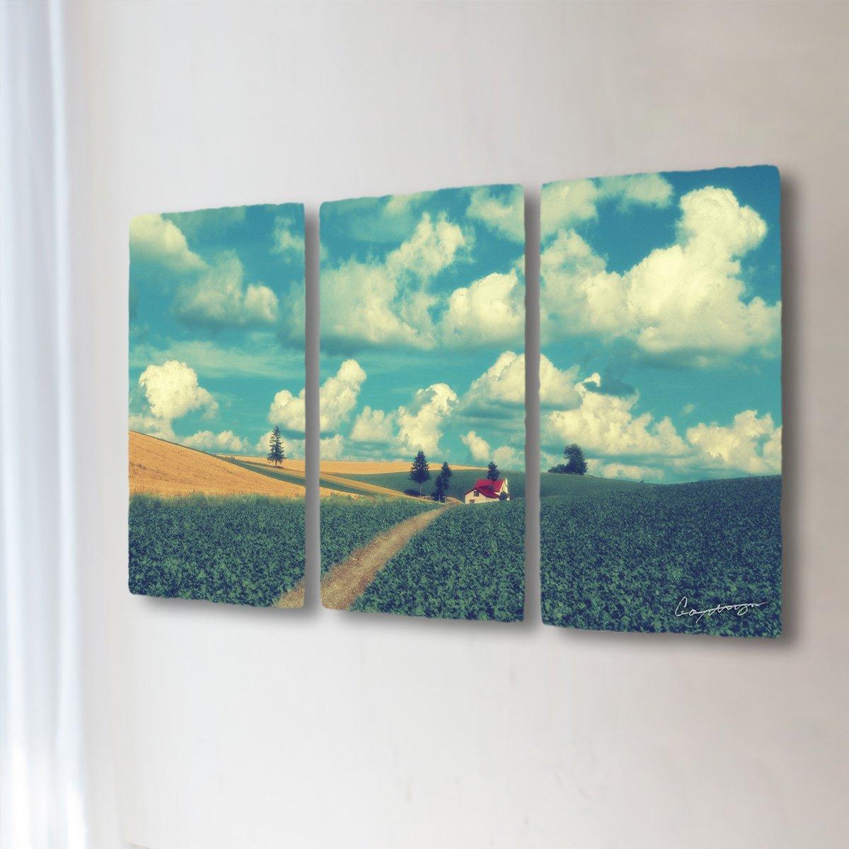 和紙 アートパネル 3枚 続き 「夏の雲とジャガイモ畑と赤い家へと続く道」 (50x28cm) 絵 絵画 壁掛け 壁飾り インテリア アート B07F587DLF 31.アートパネル3枚続き(長辺50cm) 12800円|夏の雲とジャガイモ畑と赤い家へと続く道 夏の雲とジャガイモ畑と赤い家へと続く道 31.アートパネル3枚続き(長辺50cm) 12800円