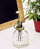 Arrosoir vaporisateur pour plantes - Style rétro - Pression avec la main 16 x 7.5cm transparent