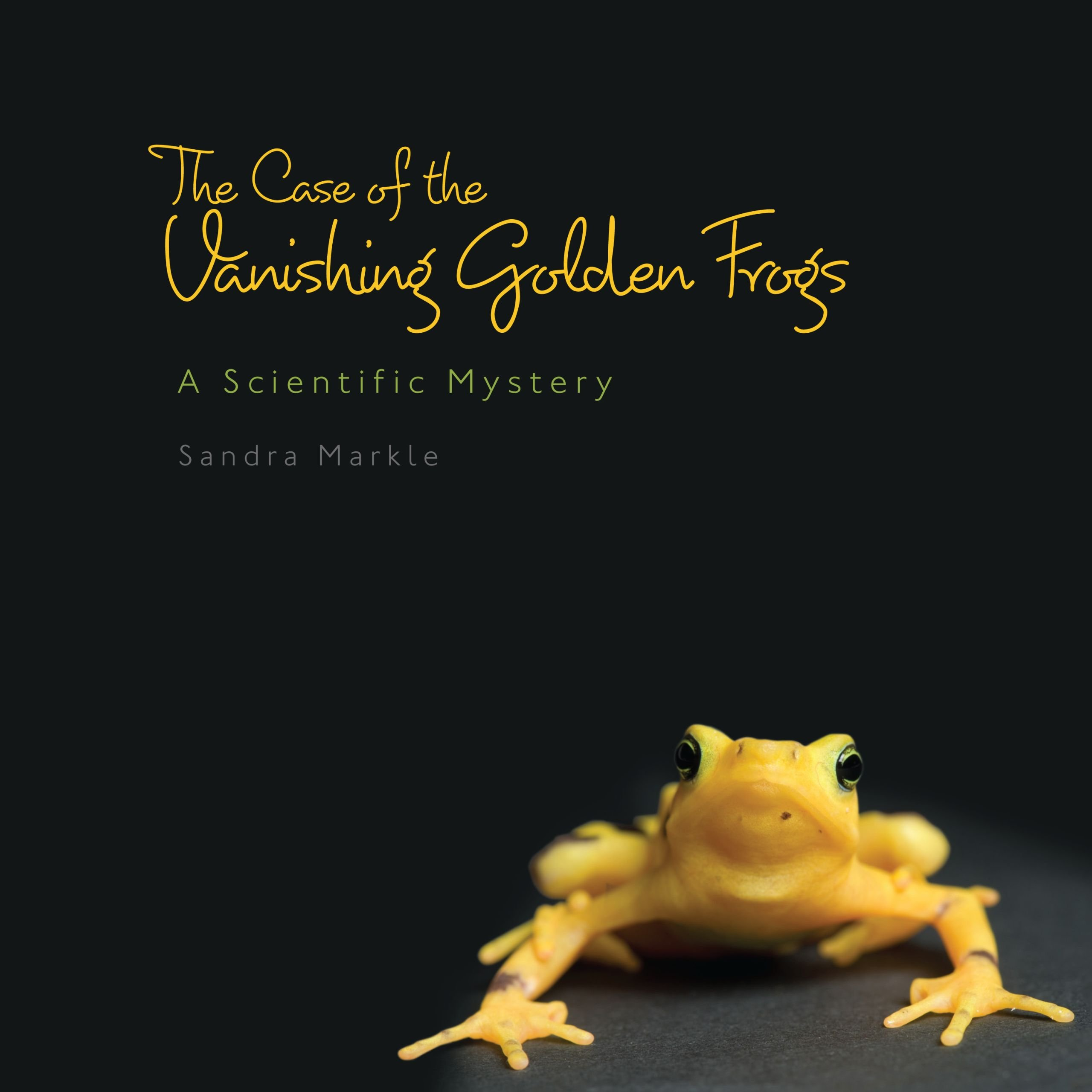 the-case-of-the-vanishing-golden-frogs-a-scientific-mystery-sandra-markle-s-science-discoveries