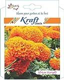 Kraft Seeds African Marigold Flower Seeds (Orange)