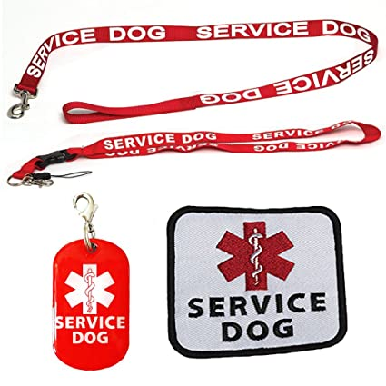 Well known Amazon.com : Service Dog Leash with Free Kit - Receive 3 Free  LD93