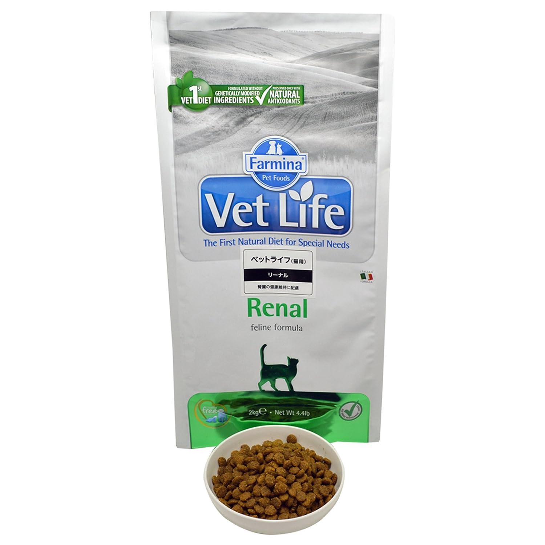 Farmina - Farmina Vet Life Feline Renal - 1105 - 2 kg: Amazon.es: Salud y cuidado personal
