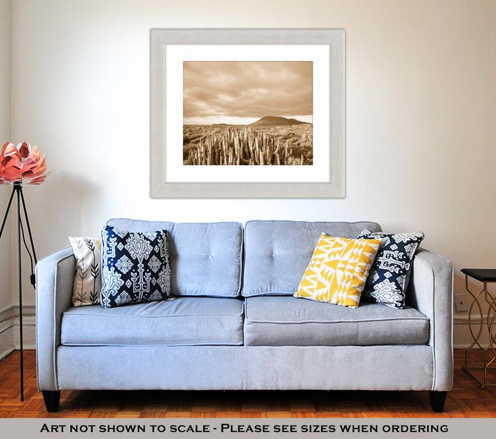 Amazon.com: Ashley Framed Prints Cactus Desert Sunset In ...