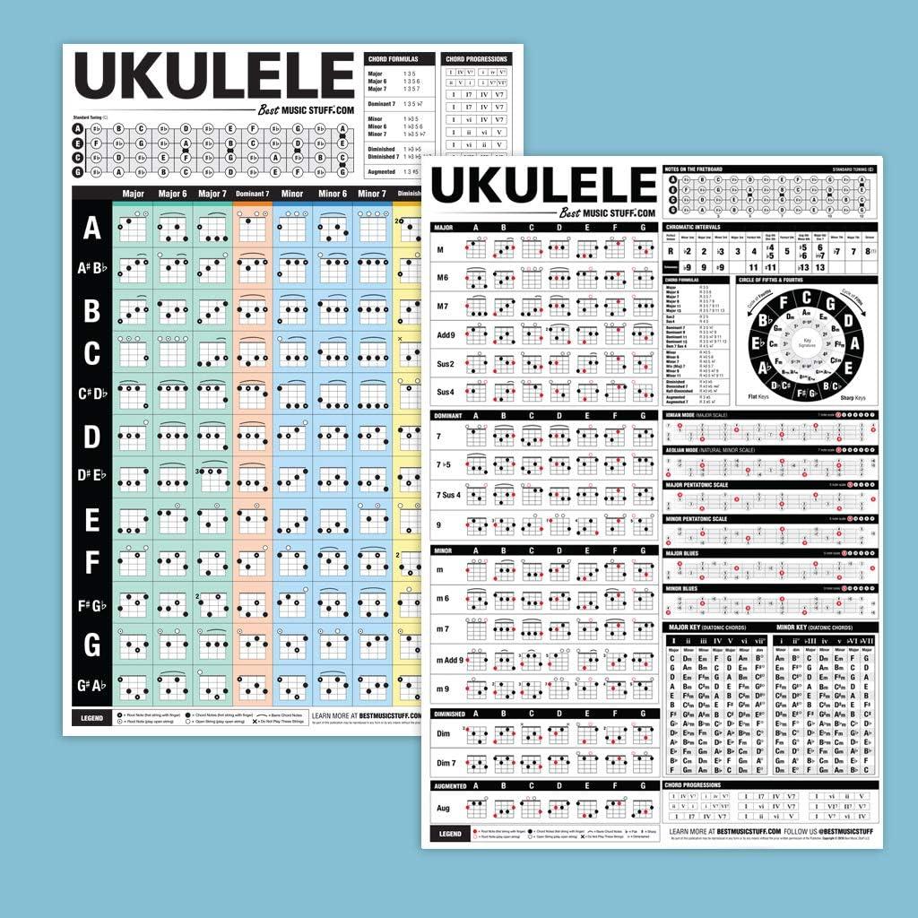 Empire - Póster de Ukelele (incluye artículo adicional): Amazon.es: Instrumentos musicales