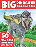 THE BIG DINOSAUR COLORING BOOK: Jumbo Kids Coloring Book With Dinosaur Facts