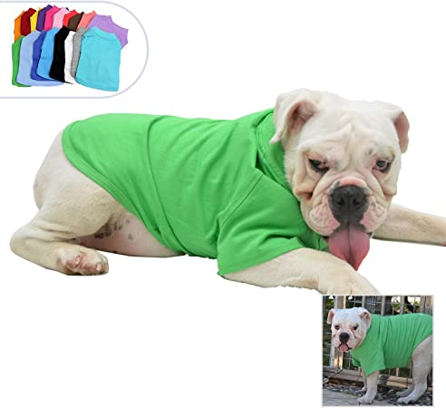 tee Dog Make Your Heart Beat fasters Love Dog Women Sweatshirt