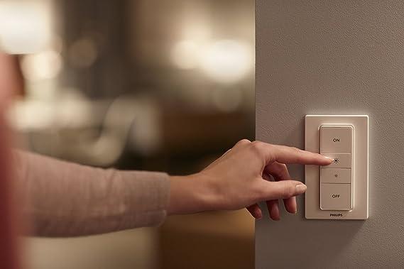 Philips Hue Aurelle - Panel Inteligente Rectangular con LED Integrado en Metal, luz Blanca y de Colores, Iluminación inteligente, compatible con ...