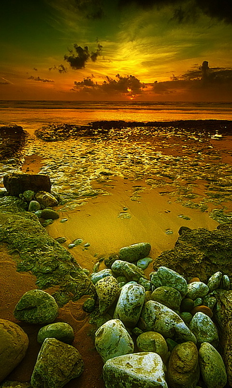 Amazon com: Nature new hd wallpaper: Appstore for Android