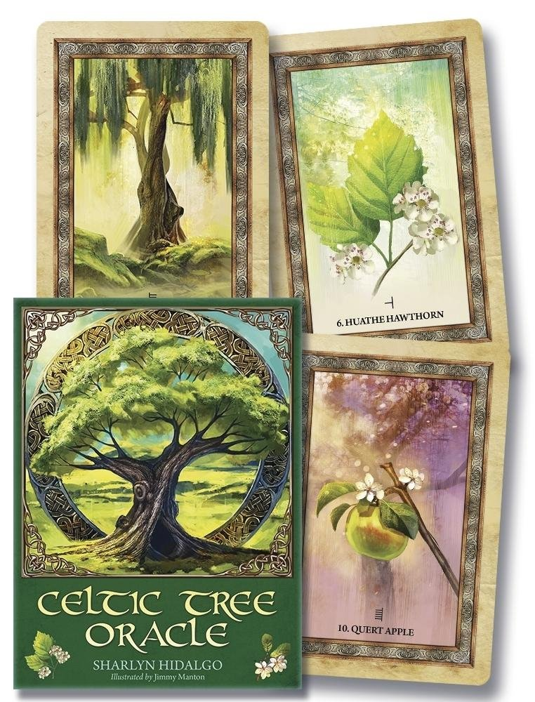Celtic Tree Oracle: Amazon co uk: Sharlyn Hidalgo
