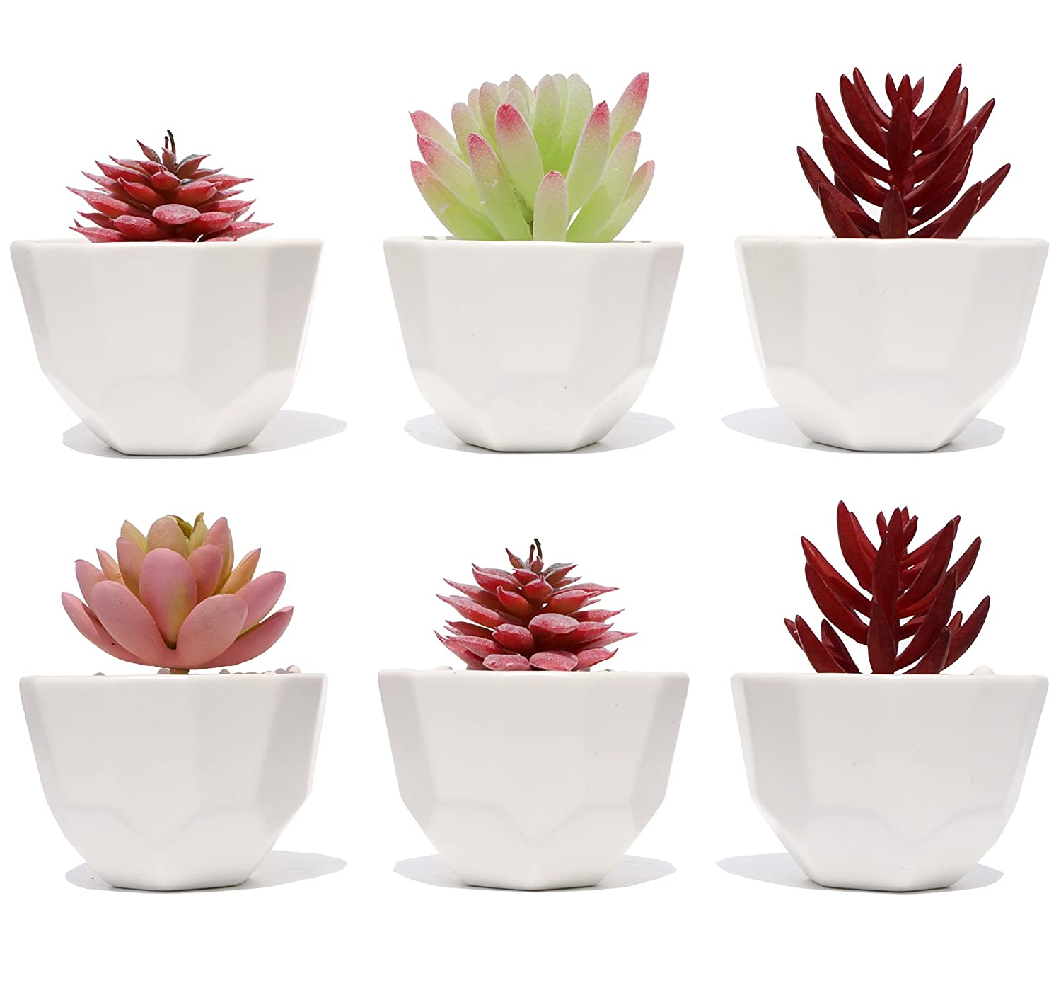 Succulent Planter Pot   3.2 Inch   Set Of 6   Small White Modern Decorative Ceramic Flower Plant Pot With Drainage   Home Office Desk Garden Mini Cactus Pot Indoor Decoration by Asriver