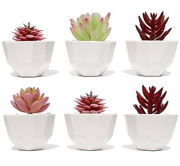 Pot De Fleurs Succulentes Lot De 3 Petit Pot De Fleurs Blanc En