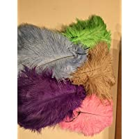10 plumas de avestruz Sowder de 30a35cm