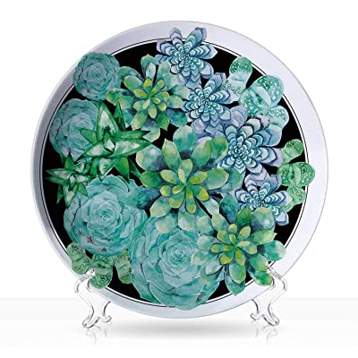"Succulent,Balcony Fresco Garden Plants Different Succulent Plants Corsage Design Exotic Flora Agave Foliage DColorfulrative for Home 7""Inch: Kitchen & Dining"