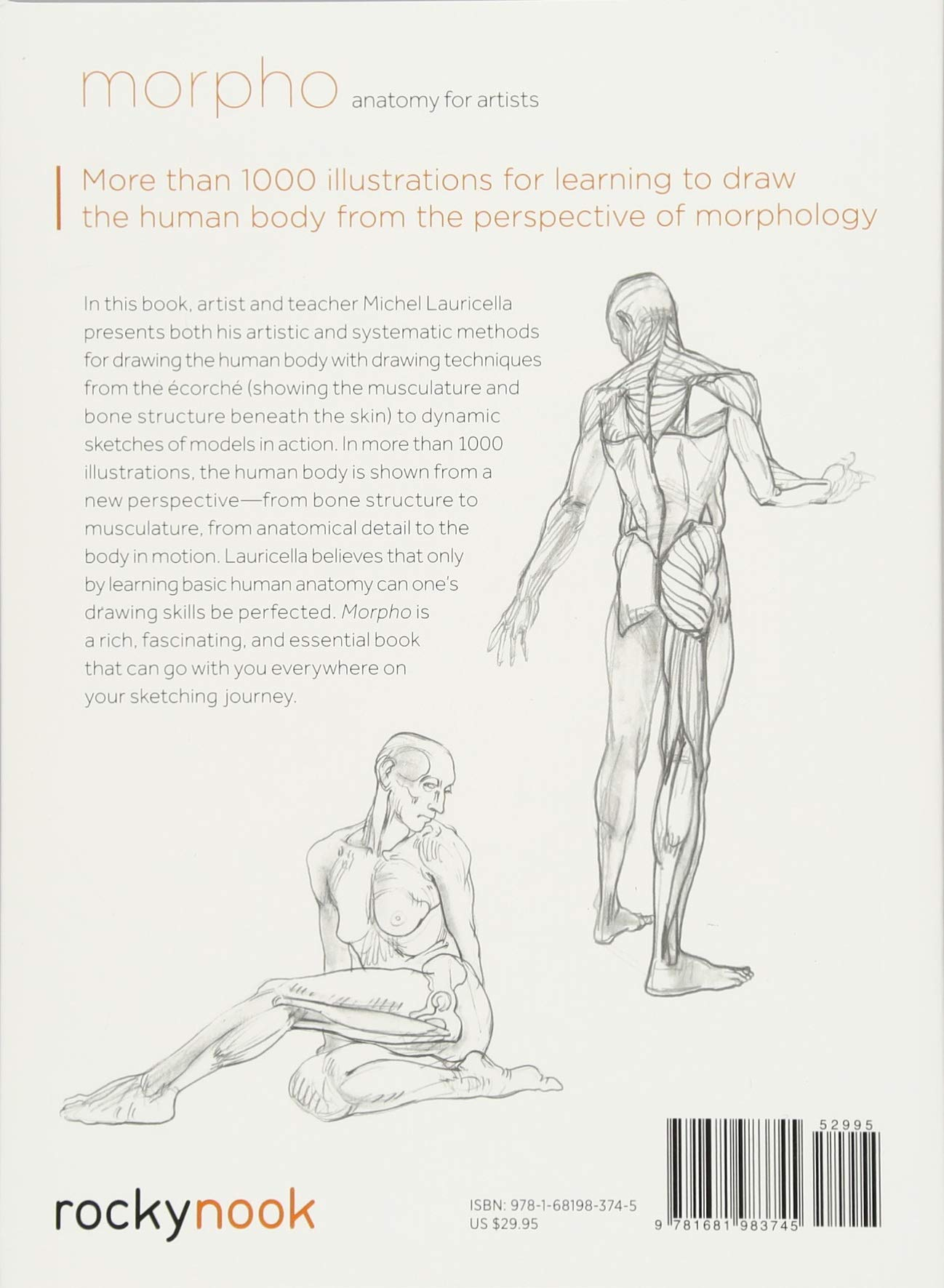 Morpho: Anatomy for Artists: Michel Lauricella: 9781681983745 ...