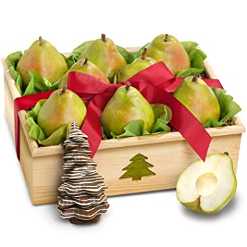 Christmas Pears.Colossal Comice Pears In Christmas Tree Gift Crate With Handmade Solid Chocolate Christmas Tree