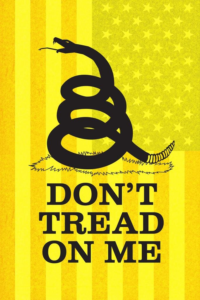 Gadsden Flag Dont Tread On Me Rattlesnake Coiled to Strike Old Glory Yellow Textured Mural Giant Poster 36x54 inch