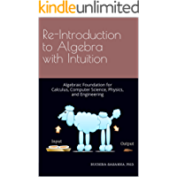 Re-Introduction to Algebra with Intuition: Algebraic Foundation for Calculus, Computer Science, Physics, and Engineering