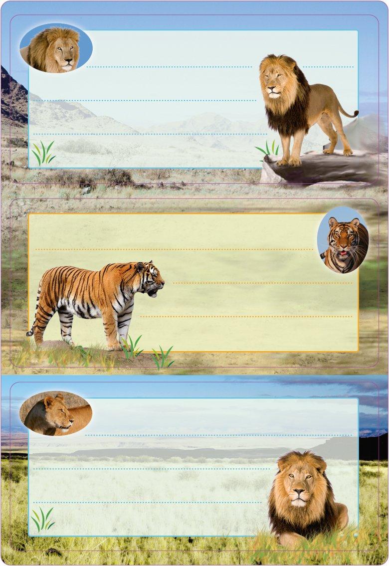 HERMA 5566Etichette Nome Quaderno per la scuola, motivo: grandi felini, formato 7,6x 3,5cm, con brillantini, contenuto confezione: 6Etichette