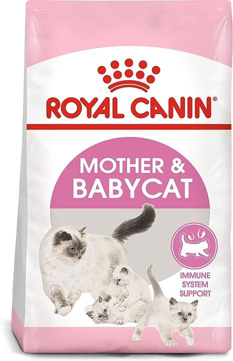 Royal Canin Madre y Babycat Comida para gatos, 3,5-libra: Amazon ...