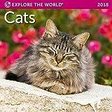 Cats Mini Wall Calendar 2018