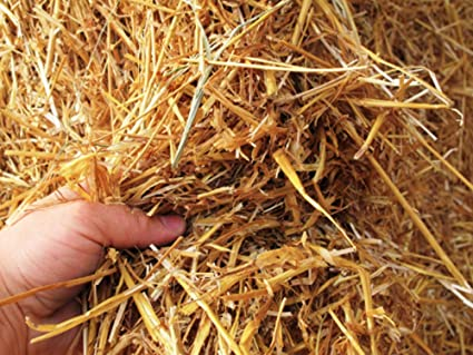 1 Cubic Foot of 100% Natural and Organic Wheat Straw