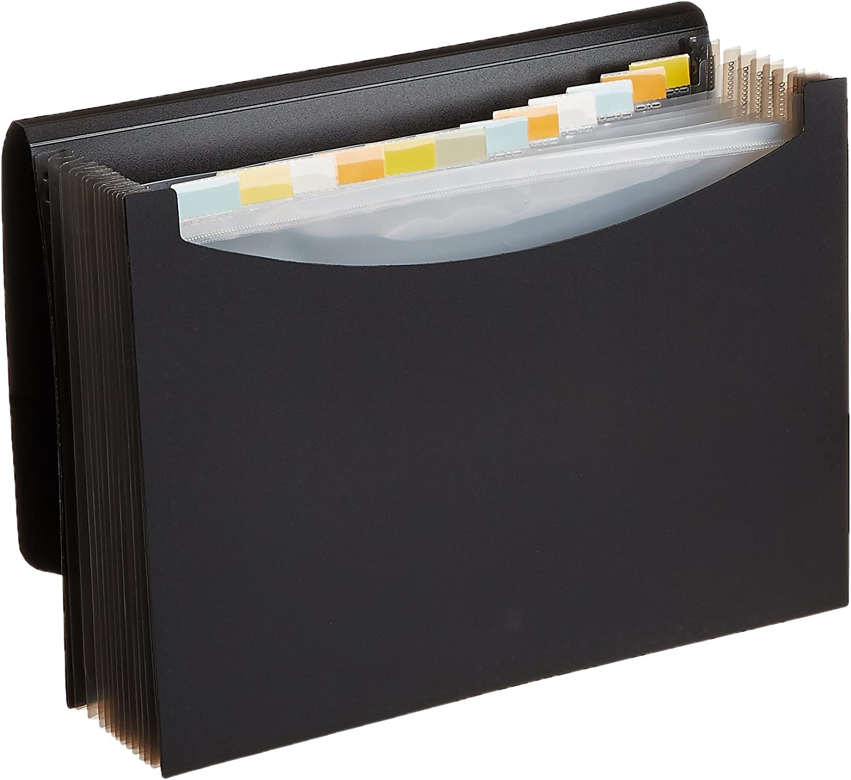 Formato Esterno 33 x 23 cm Grigio Fum/è Fellowes Leonardi 40331 Cartelle Soffietto a 12 Scomparti