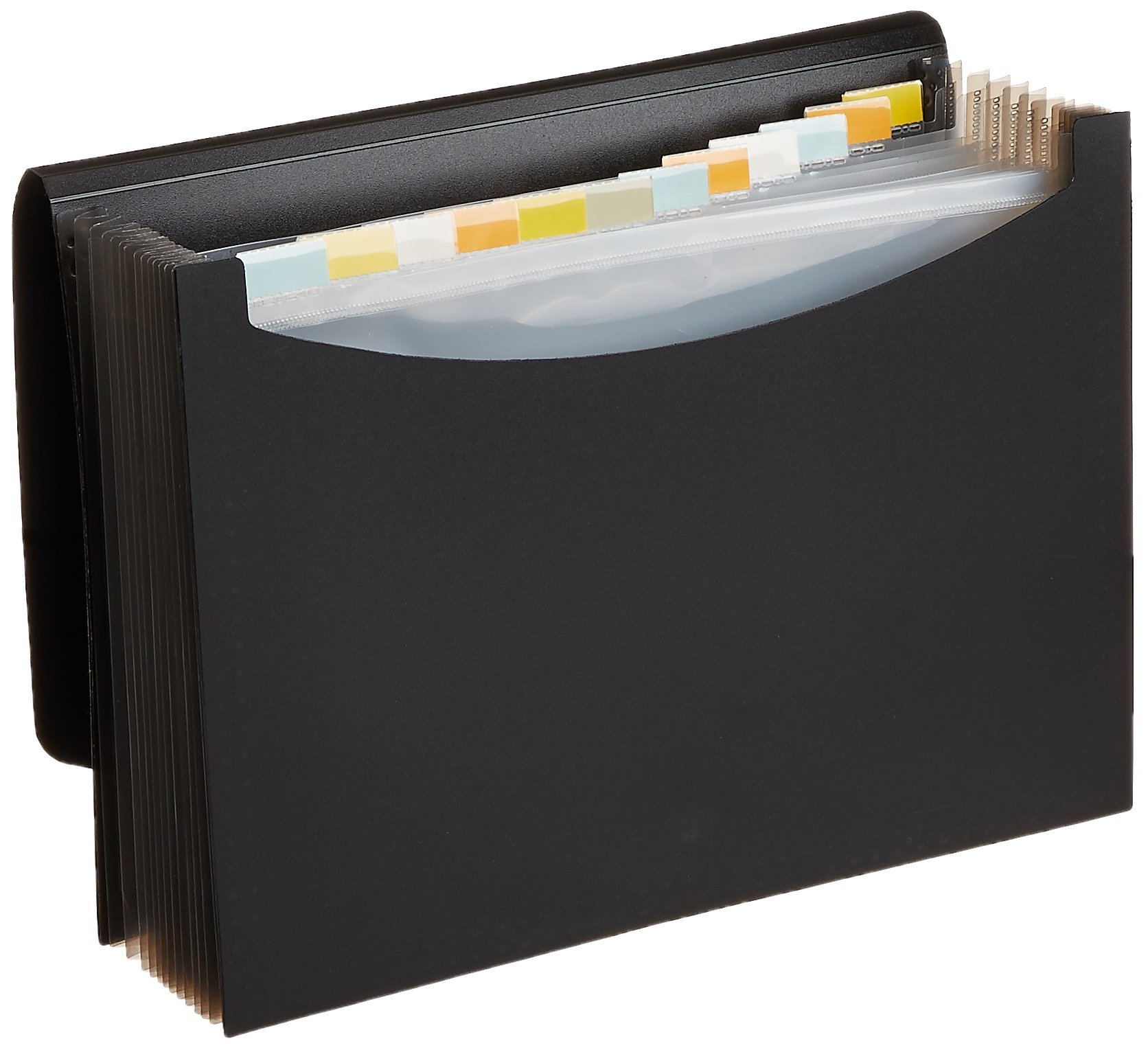 AmazonBasics Expanding File Folder, Letter Size (Fits A4 Paper) - Black - with 13 pockets product image