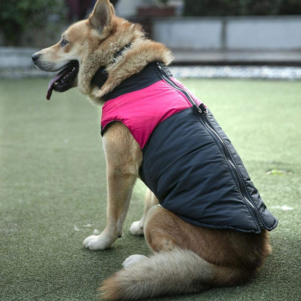 FOTABPYTI Waterdichte dons Warme kleding voor huisdieren, hondenkleding, hondenjas Pet Puppy voor Hond(2XL)