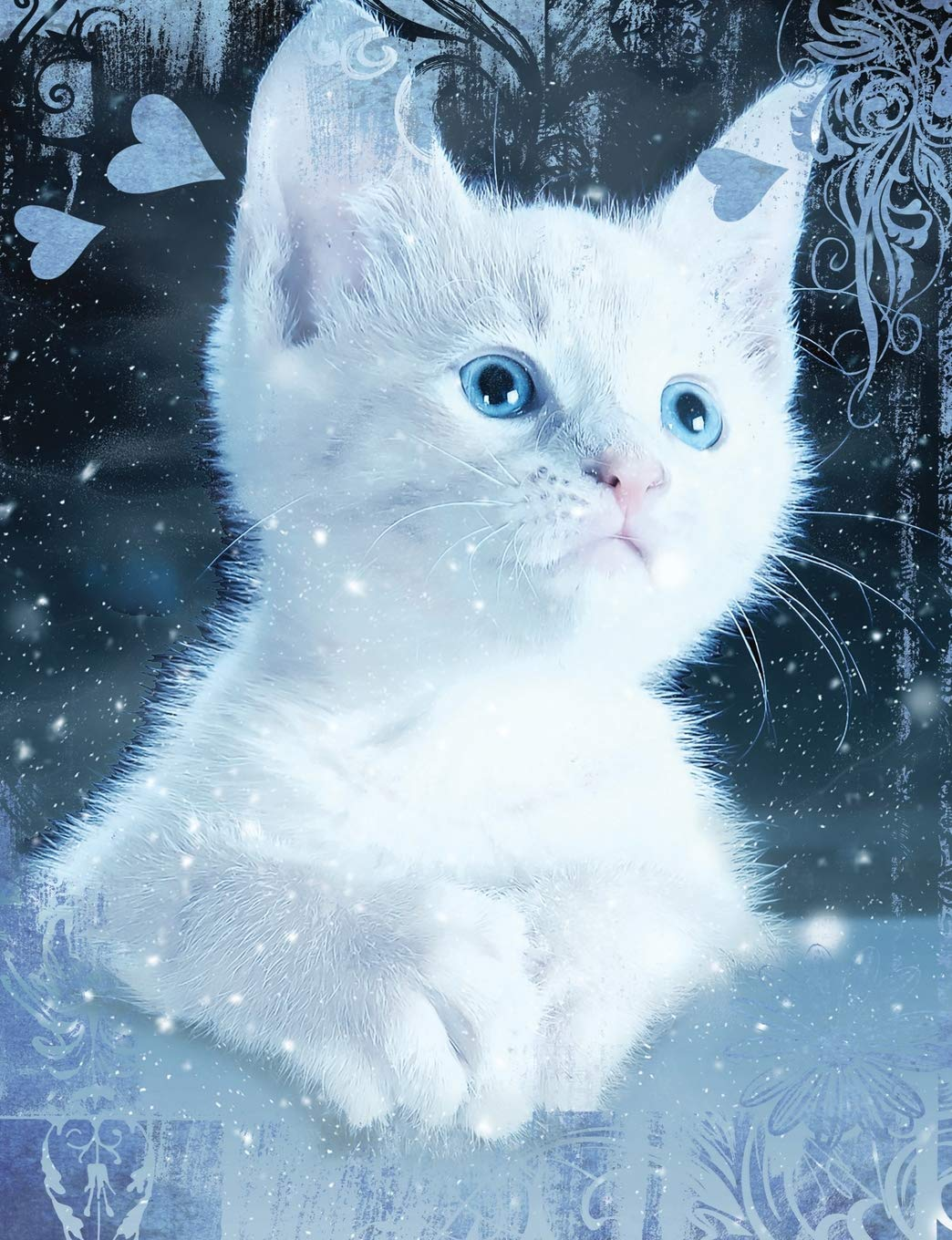 Buy White Snow Blue Eye Cat Composition Notebook Wide Ruled Lined Student Exercise Book Cute Kittens Series Book Online At Low Prices In India White Snow Blue Eye Cat Composition Notebook