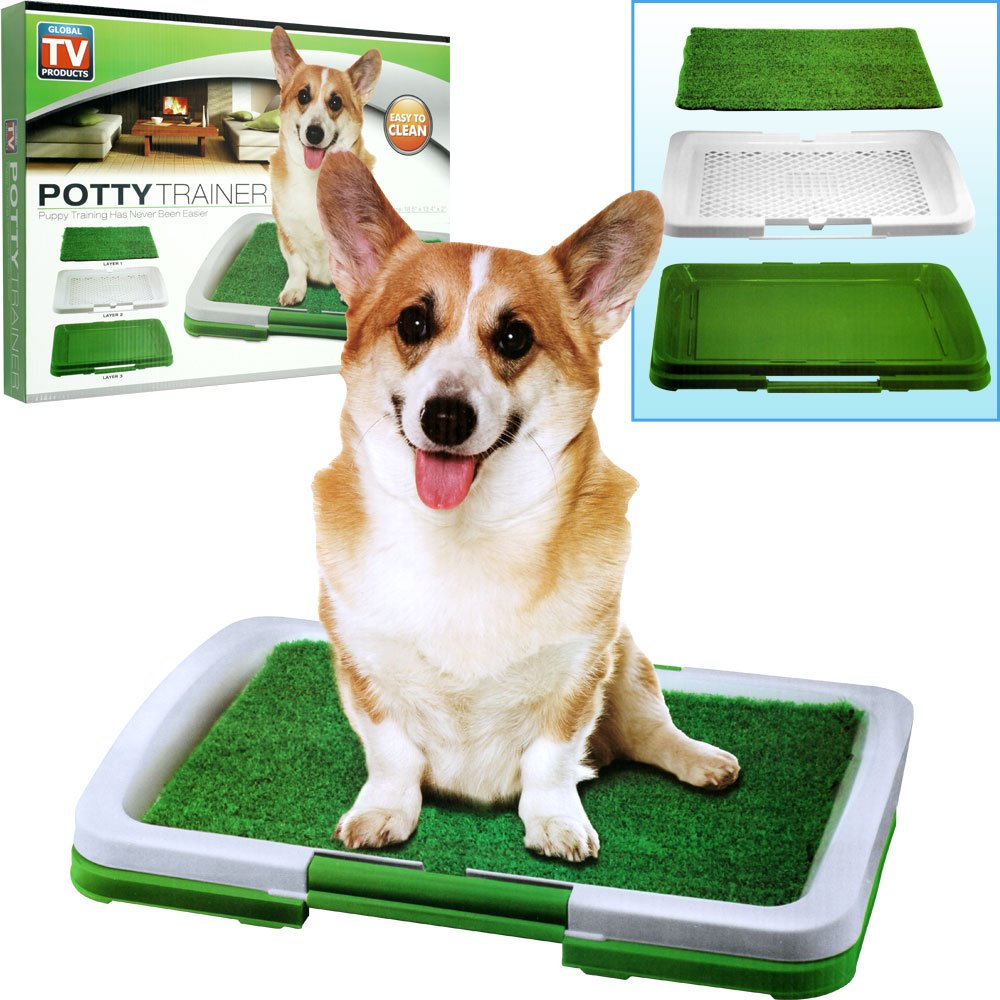 Puppy Potty Trainer Indoor Grass Training Patch - 3 Layers Puppy ... | How Do You Potty Train A Dog