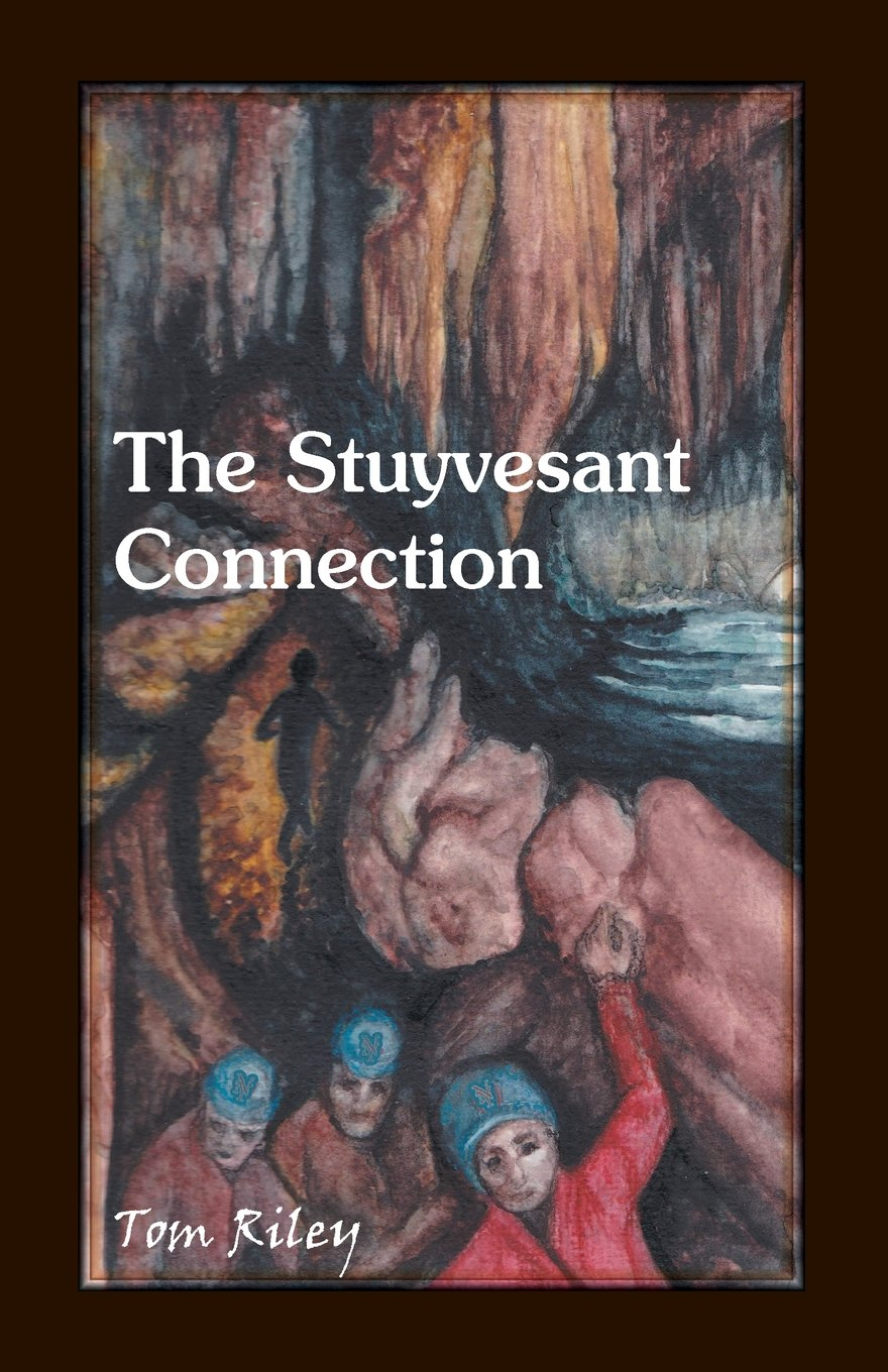 The Stuyvesant Connection ebook