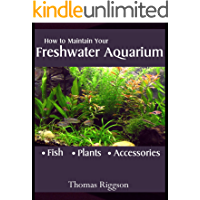 How to Maintain Your Freshwater Aquarium