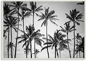 Stupell Industries Palm Trees Skyline Black and White Photography Wall Plaque, 12 x 18, Multi-Color