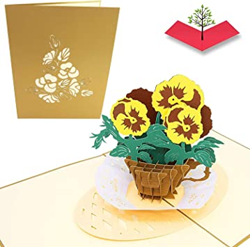 Amazon Com Poplife Teacup Pansies 3d Pop Up Mother S Day Card Birthday Pop Up Card Baby Shower Gift Get Well Fold Flat For Mailing For Mother For Daughter For