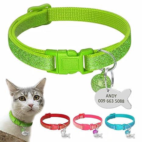 BERRY Kitten - Collares para Gato – Brillante Personalizado para identificación de Mascota Perro Gato –
