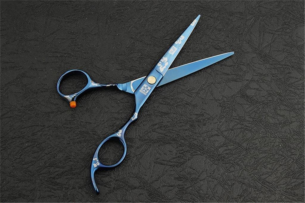Set von Haarscheren und Frisur Frisur Frisur Verdünnung Schere, 6.0inch Präsentation Fall B075WVDJNF | Ausgezeichnetes Handwerk  2d9b81