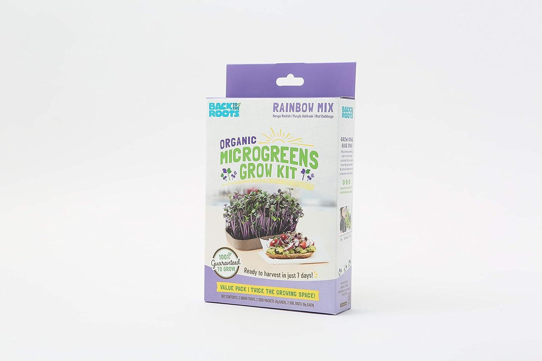 Back to the Roots Organic Microgreens Grow Kit, Rainbow Mix