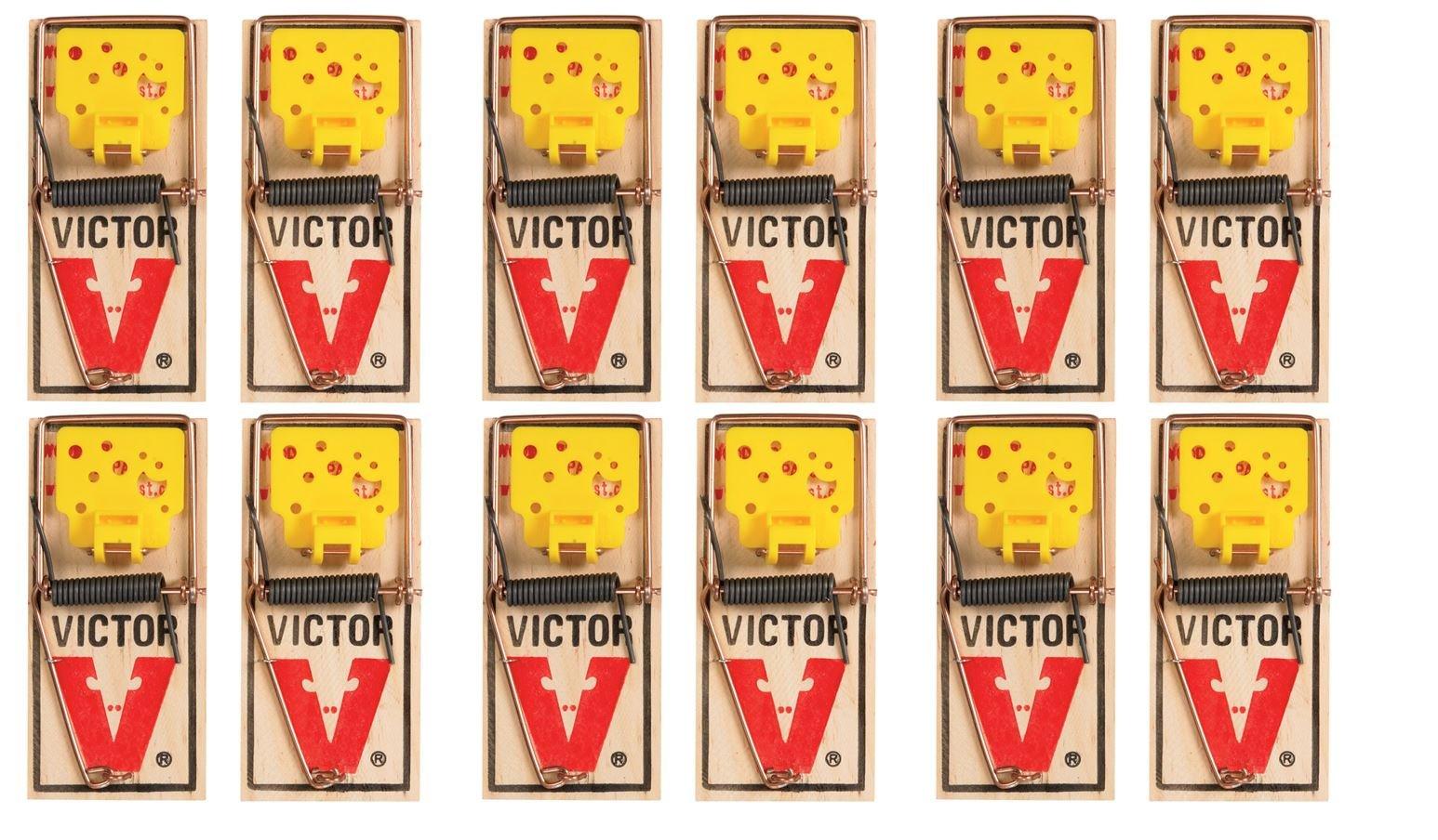 Victor EZ set mouse trap (Pack of 12)