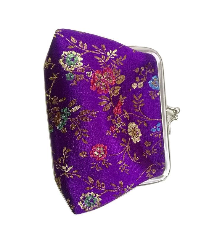 Amazon.com: Chino bordado satén de seda Mini cartera ...