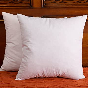 Amazon 40 X 40 Inch Set Of 40 Down And Feather Pillow Insert Gorgeous 18 Inch Pillow Insert