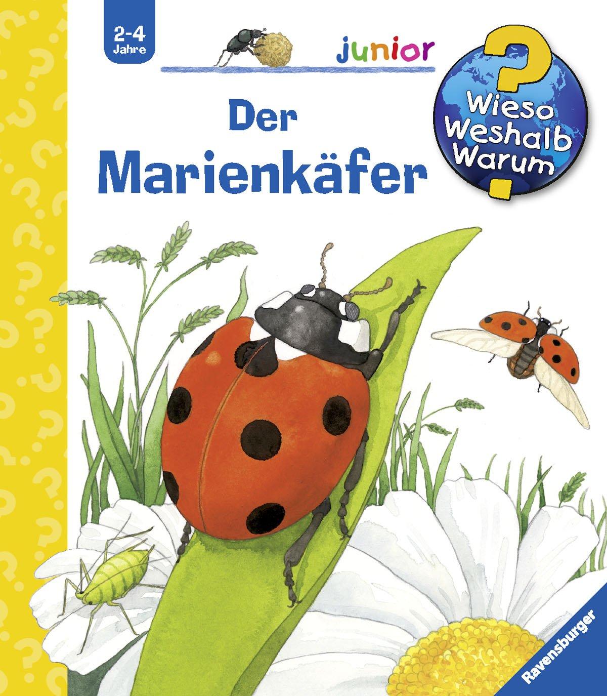 Der Marienkäfer (Wieso? Weshalb? Warum? junior, Band 19)
