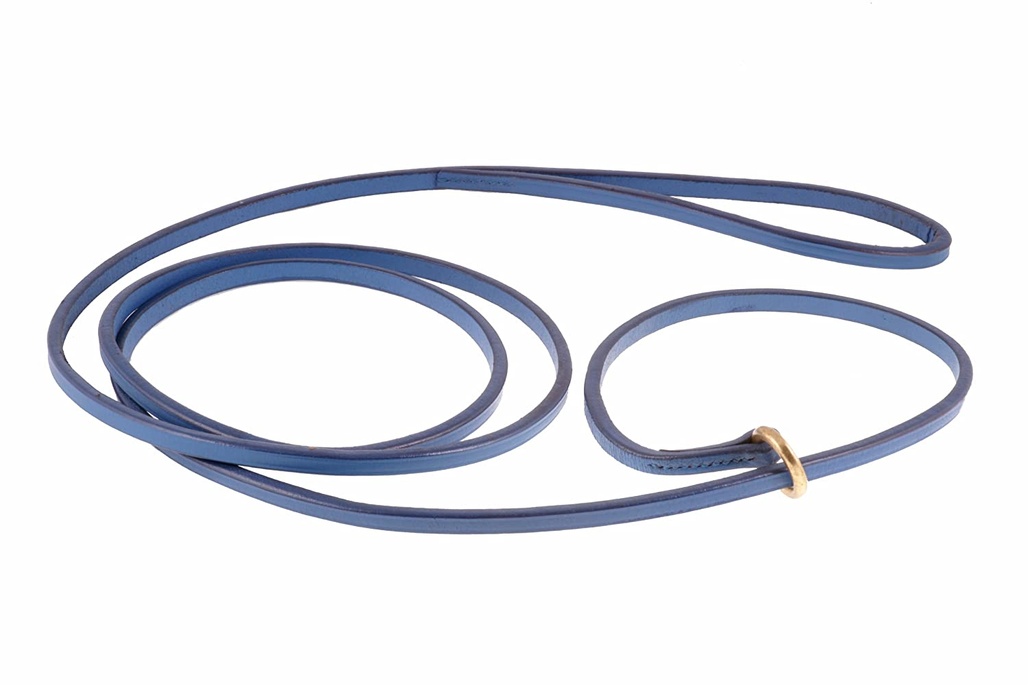 bluee Alvalley Flat Slip Lead for Dogs 3 16 in x 6ft